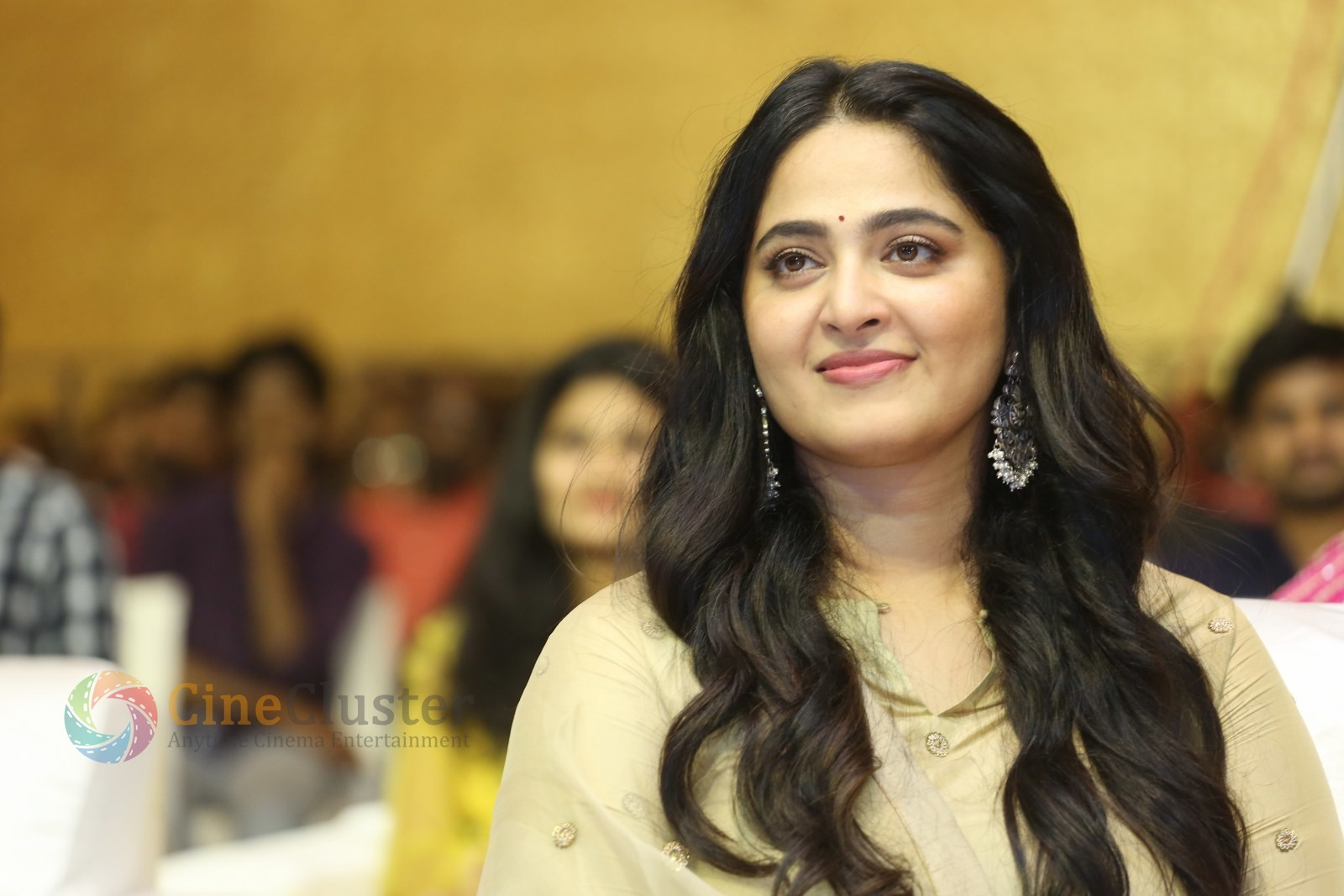 15 Years of Anushka Shetty celebration stills