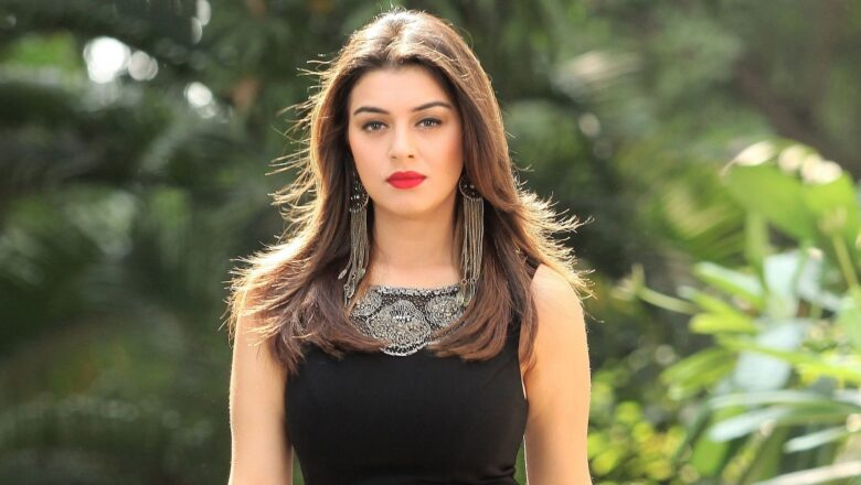 HANSIKA MOTWANI IS JOINING WITH THIS DIRECTOR FOR HER NEXT!